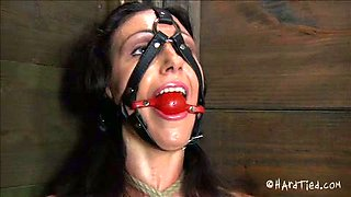 Tied lady gets her muff toyed in the corner of a barn