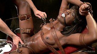 Ana Foxxx in Ana Foxxx Extreme Orgasms - HogTied