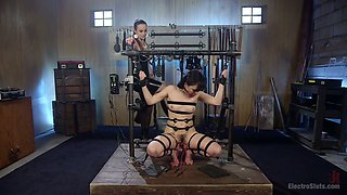 Red haired mistress Bella Rossi makes one tied up bitch lick her muff
